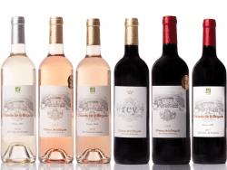 cartons de 6 bouteilles de vin